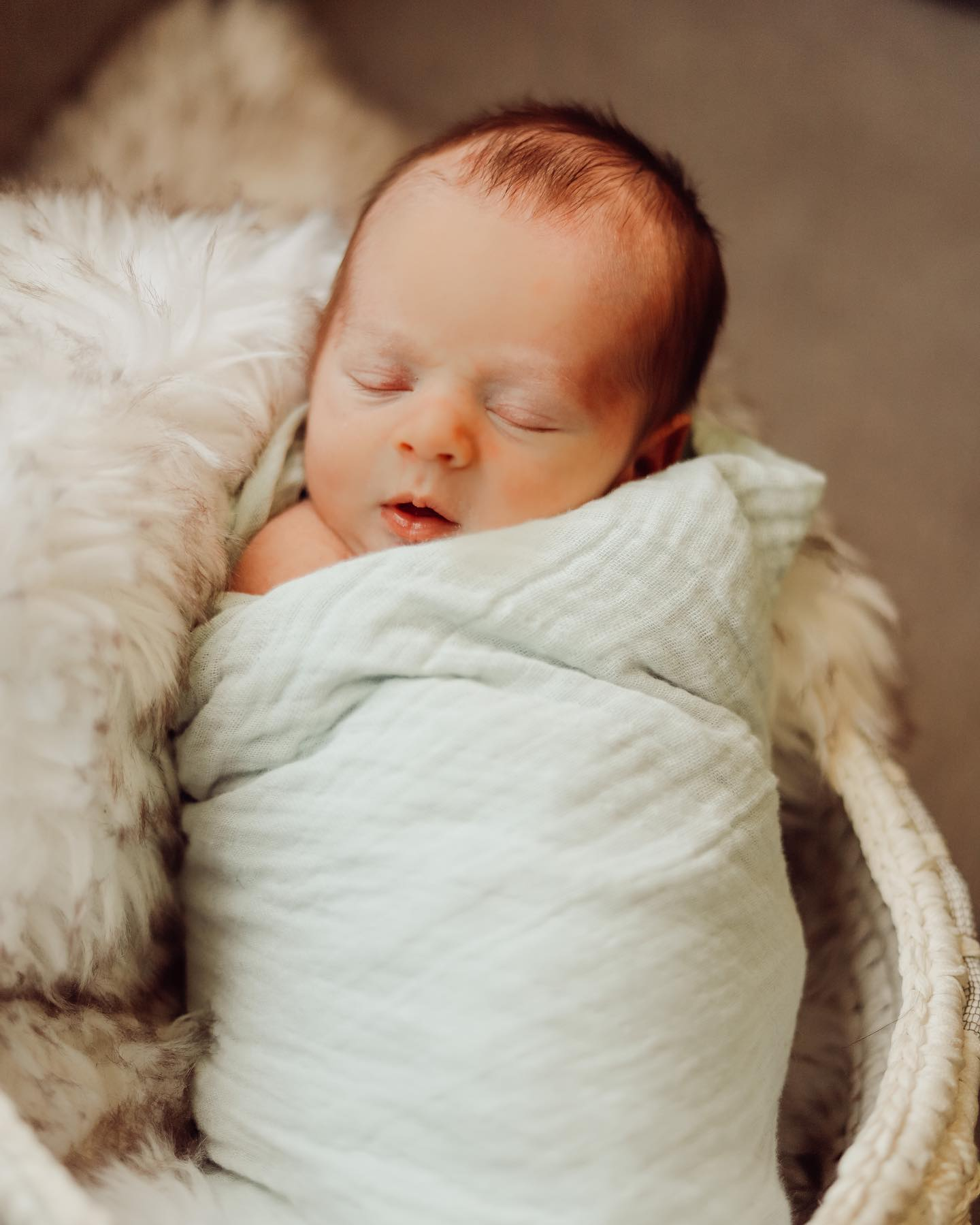 Everything You Need For In Home Newborn Photos!
