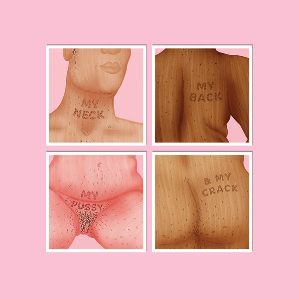 Neck, Back, Pussy & Crack Vinyl Sticker Pack