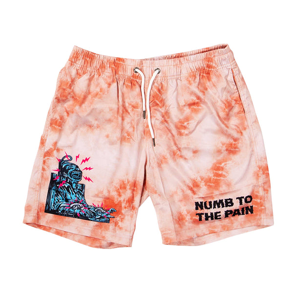 Painless Tie Dye Shorts