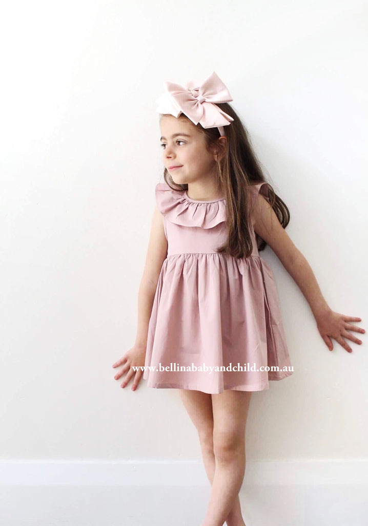 Siena Blush Dress