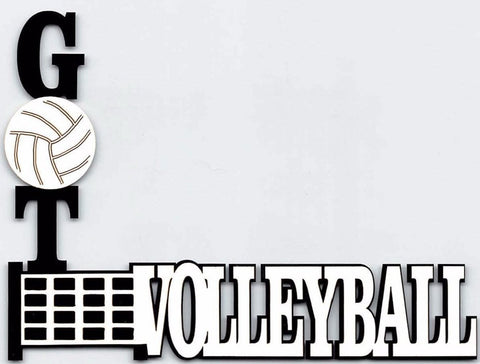 Got Volleyball