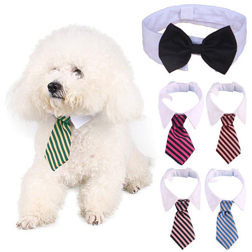 Small Pet Fashion Cute Bow Tie