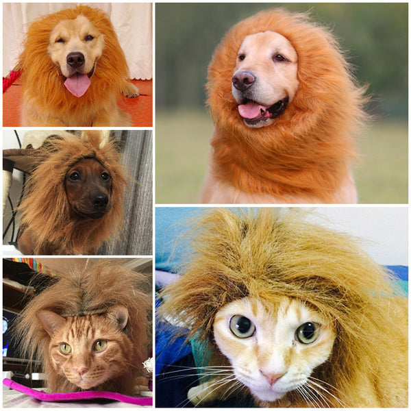 Winter Warm Pet Costume Lion Mane For Dogs Cats