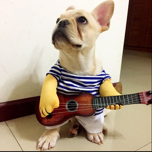 Funny Guitar Player Cosplay Dog Cat Costume
