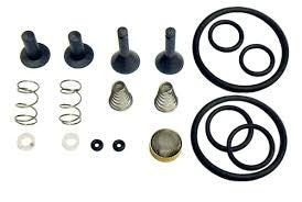 CPS Recovery Pump TR21X1 Valve Rebuild Kit - extraction equipment canada, extraction equipment - Evolved Extraction Solutions