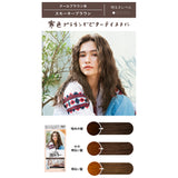 Kao Liese Prettia Bubble Hair Color Smokey Brown
