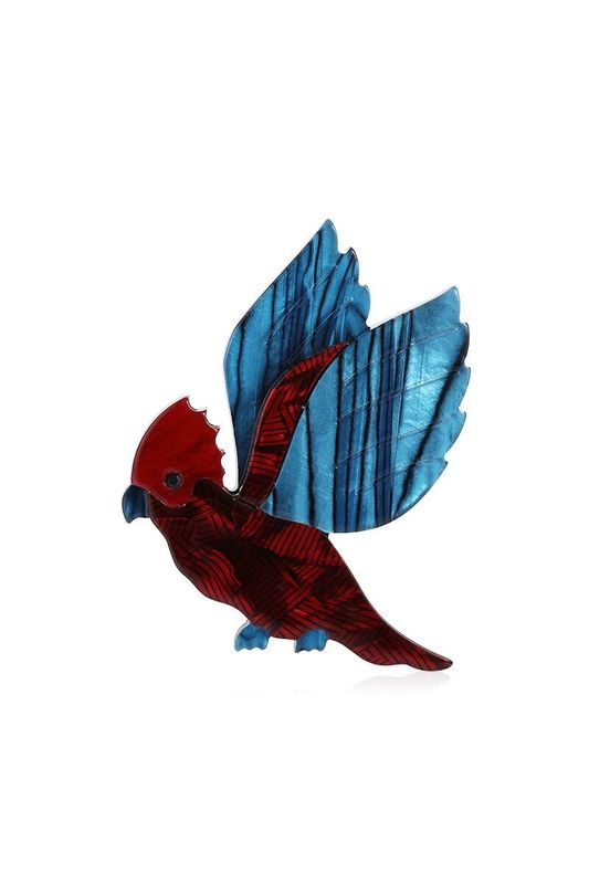 Bug and Bear Squawky The Parrot Acrylic Brooch | Buy Online at Weekends