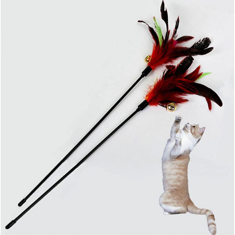 Cat Feather Toy - Order Today!