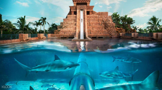 Waterparks of the World You Need to Visit!