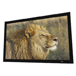 "Elunevision Reference Studio 4K Fixed Frame - 1.0 Gain - 4"" Frame"
