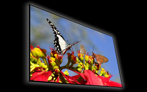 "Elunevision Reference Studio 4K SLIM Frame Screen - 0.75"" Frame"