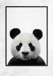 Nursery Animals - Panda