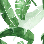 Banana leaves in Watercolour