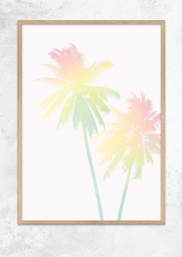 A Pair of Rainbow Palms