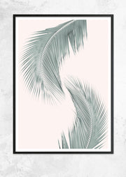 Silver Coconut Palms 1