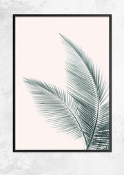 Silver Coconut Palms No II