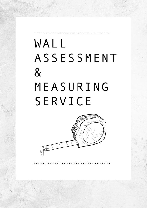 Wall Assessment & Measuring Service
