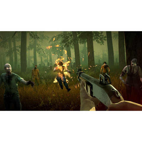 Nintendo Switch Into the Dead 2 (US)