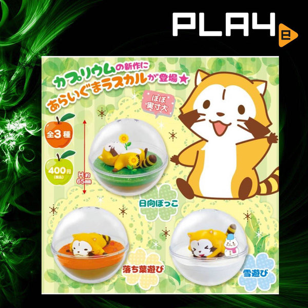 SK Japan Puchi Rascal Capsule Set of 3