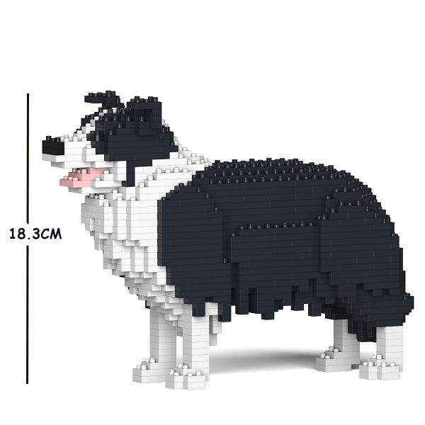 JEKCA Border Collie 01S-M01