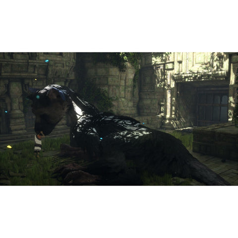 PS4 The Last Guardian (US)