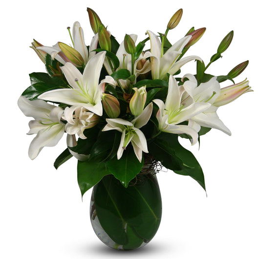 Classic Lilies
