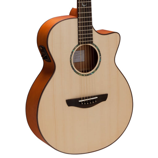 Faith Guitars | Natural Series VENUS | All Solid Acoustic | Fishman | Hard Case | FV