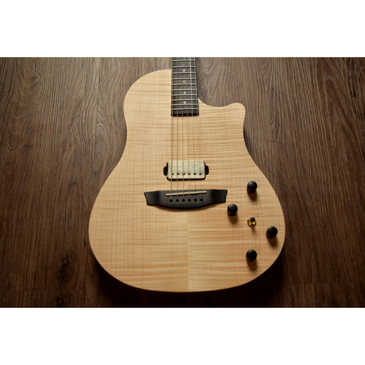 Healer Acoustic Custom Chamber Guitar w/ Dual Pickup System HAC-2H NA Acoustic Guitar by Healer - Gsus4