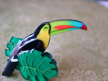 Vera Chan originals - Happy toucan brooch (Closed beak)