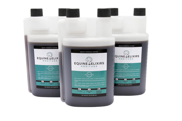 Positude - Hormone Support for Mares, Geldings and Stallions