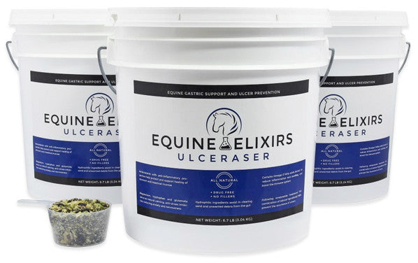 Equine gastric support and ulcer prevention