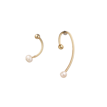 The Tail End earring