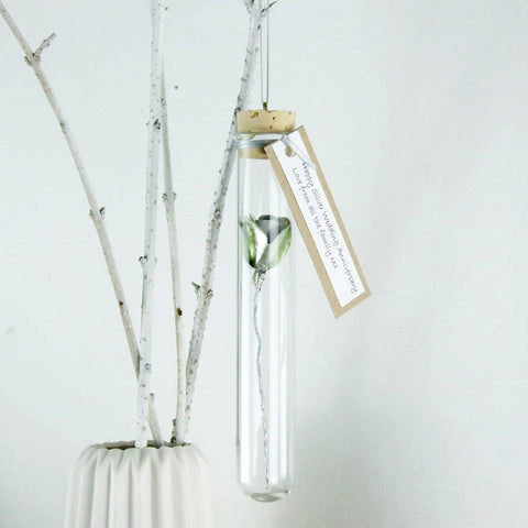 Silver Wedding Anniversary Gift - Silver Personalised Paper Rose In A Glass Vial - Made In Words