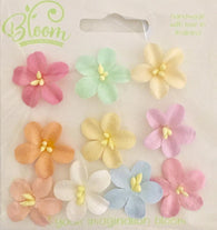 Bloom - Flowers - Blossoms - Pastel (10pc)