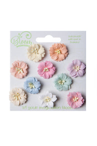 Bloom - Flowers - Apple Blossoms - Pastel (10pc)