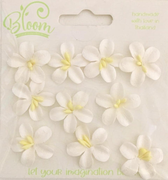 Bloom - Flowers - Blossoms - White (10pc)