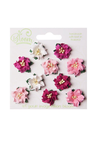 Bloom - Flowers - Mini Gardenia - Pink (10pc)