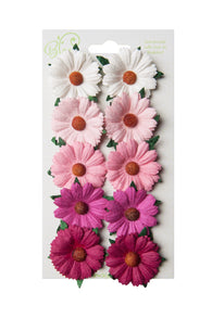 Bloom - Flowers - Chrysanthemums - Pink and White (10pc)