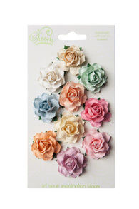Bloom - Flowers - Cottage Roses - Pastel (10pc)
