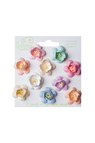 Bloom - Flowers - Cherry Blossoms - Pastel (10pc)