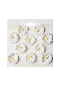 Bloom - Flowers - Cosmos - White (10pc)