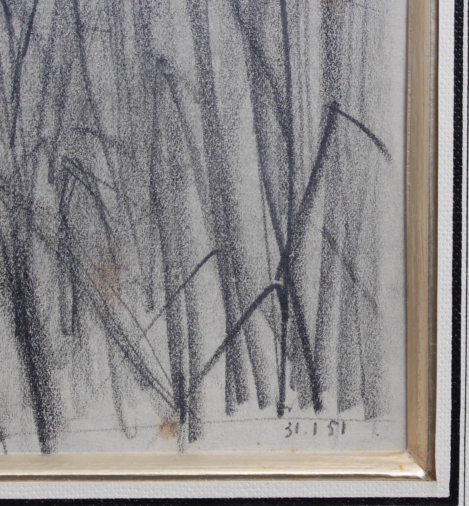 'Feather Reed Grass' by Unknown (1951)