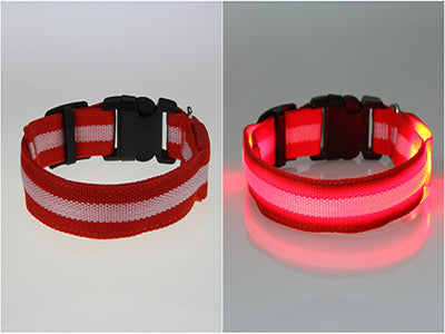 Collier Led