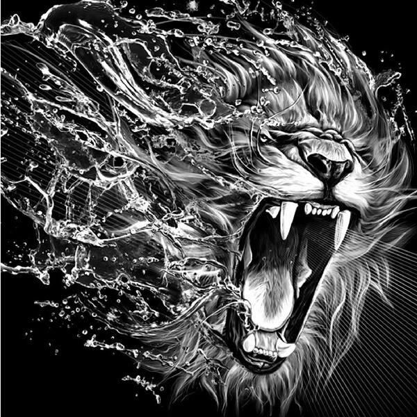 B&W Lion 1 - Diamond Painting Kit