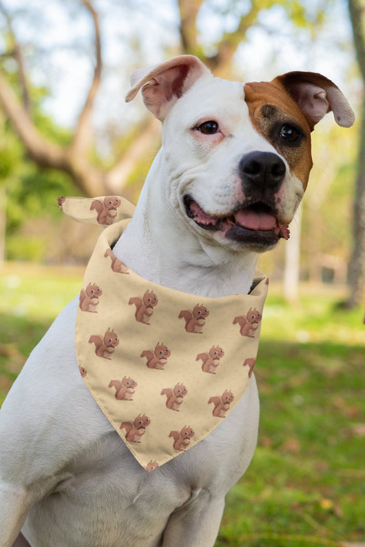 Squirrel Triangle Dog Bandana - Squirrel Bandana For Pet  - Cute Fashion For Your Favorite Pup
