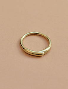Mercury drip ring