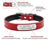 Personalized Dog Collar, Leather, Adjustable