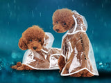 Transparent Raincoat With Hood For Small Dogs, Comfortable and Lightweight