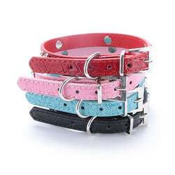 Small Bones Dog Collar, High Quality Leather, Perfect for Small Dogs
