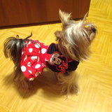 Adorable Minnie Mouse Yorkie Dress